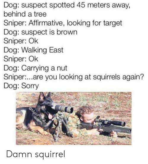 Sorry, Target, and Squirrel: Dog: suspect spotted 45 meters away,  behind a tree  Sniper: Affirmative, looking for target  Dog: suspect is brown  Sniper: Ok  Dog: Walking East  Sniper: Ok  Dog: Carrying a nut  Sniper:...are you looking at squirrels again?  Dog: Sorry  @MasiPopal Damn squirrel