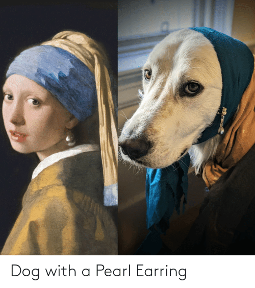 earring: Dog with a Pearl Earring