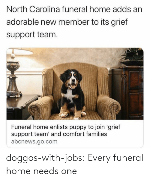 funeral: doggos-with-jobs:  Every funeral home needs one