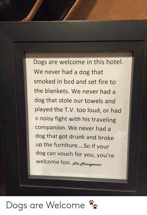 Dogs, Drunk, and Fire: Dogs are welcome in this hotel.  We never had a dog that  smoked in bed and set fire to  the blankets. We never had a  dog that stole our towels and  played the T.V. too loud, or had  a noisy fight with his traveling  companion. We never had a  dog that got drunk and broke  up the furniture....So if your  dog can vouch for you, you're  welcome too. Jhe cManagement Dogs are Welcome 🐾