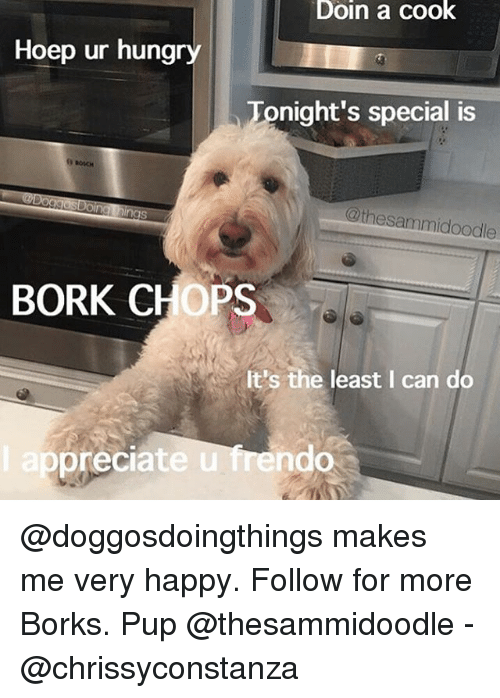 eps: Doin a cook  Hoep ur hungry  Tonight's special is  @thesammidoodle  BORK CHOPS  It's the least I can do  ep  preciate u frendo @doggosdoingthings makes me very happy. Follow for more Borks. Pup @thesammidoodle - @chrissyconstanza