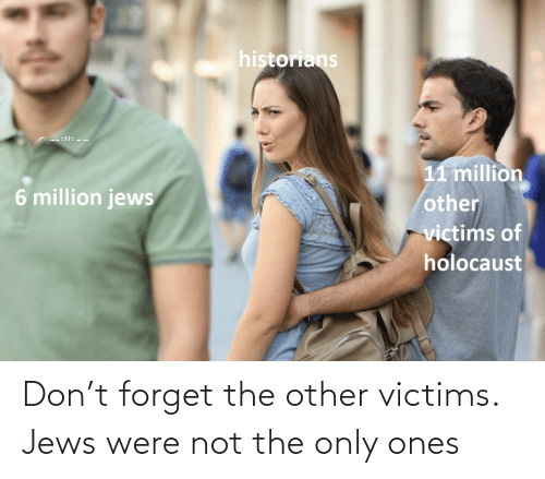 Not The: Don't forget the other victims. Jews were not the only ones