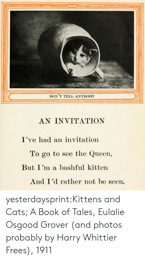 grover: DON T TELL ANYBODY  AN INVITATION  I've had an invitation  To go to see the Queen,  But I'm a bashful kitten  And I'd rather not be seen. yesterdaysprint:Kittens and Cats; A Book of Tales, Eulalie Osgood Grover (and photos probably by Harry Whittier Frees), 1911