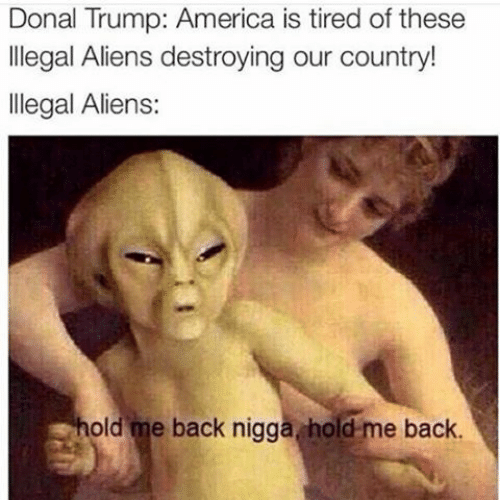 America, Aliens, and Trump: Donal Trump: America is tired of these  llegal Aliens destroying our country!  llegal Aliens:  old me back nigga hold-me back.