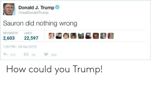 Lord of the Rings, Trump, and How: Donald J. Trump  @realDonaldTrump  Sauron did nothing wrong  RETWEETS LIKES  2,603 22,597 92 e  1:50 PM - 09 Apr 2019  14,479 t33K 雙23K How could you Trump!