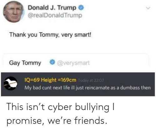 Bad, Friends, and Life: Donald J. Trump  @realDonaldTrump  Thank you Tommy, very smart!  Gay Tommy @verysmart  IQ-69 Height -169cm Toda  My bad cunt next life ill just reincarnate as a dumbass then  at 22:07 This isn't cyber bullying I promise, we're friends.