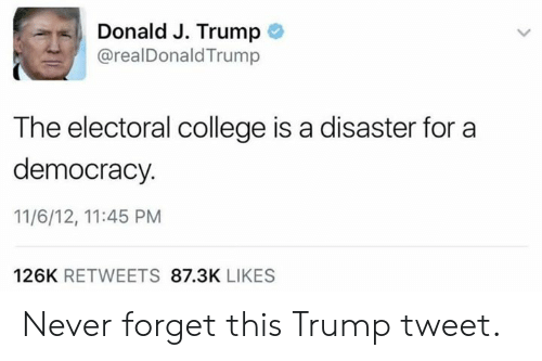 College, Memes, and Trump: Donald J. Trump  @realDonaldTrump  The electoral college is a disaster for a  democracy  11/6/12, 11:45 PM  126K RETWEETS 87.3K LIKES Never forget this Trump tweet.