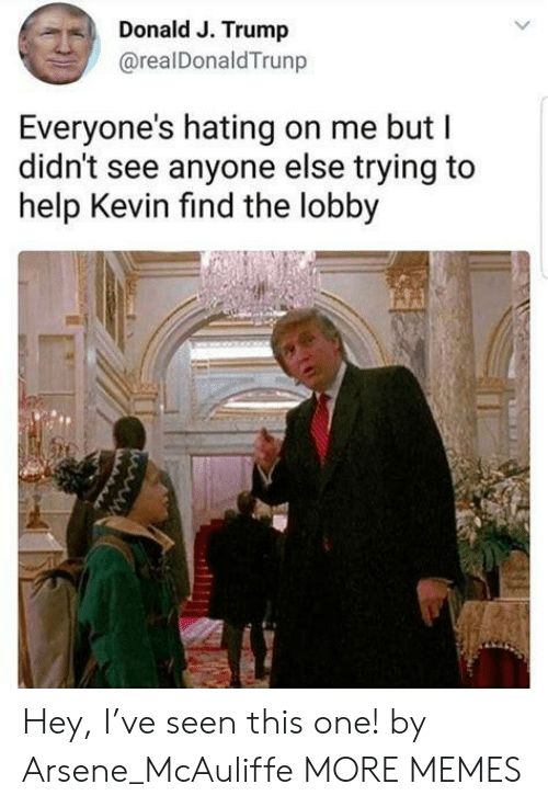 Hating: Donald J. Trump  @realDonaldTrunp  Everyone's hating on me but I  didn't see anyone else trying to  help Kevin find the lobby Hey, I've seen this one! by Arsene_McAuliffe MORE MEMES