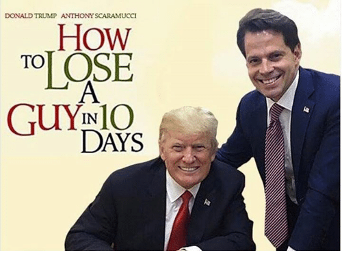 Donald Trump, Trump, and How: DONALD TRUMP ANTHONY SCARAMUCCI  How  TOOSE  GUYINIO  DAYS