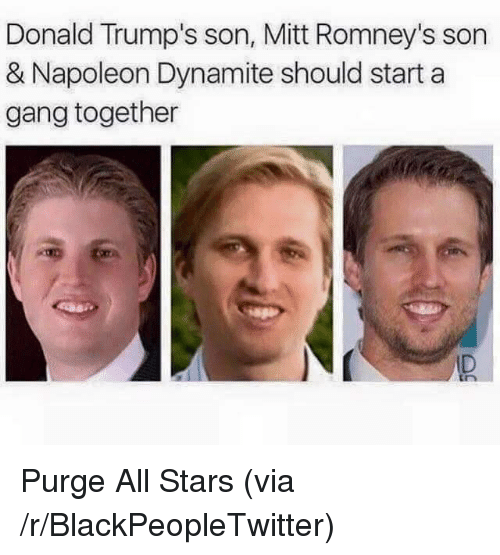 Napoleon Dynamite: Donald Trump's son, Mitt Romney's son  & Napoleon Dynamite should start a  gang together  ID <p>Purge All Stars (via /r/BlackPeopleTwitter)</p>