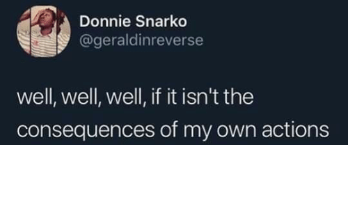 Own, Well, and Donnie: Donnie Snarko  @geraldinreverse  well, well, well, if it isn't the  consequences of my own actions