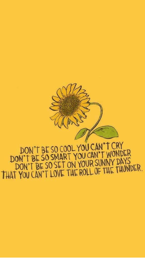 Love, Cool, and Wonder: DON'T BE SO COOL YOU CAN'T CRY  DON T BE SO SMART YOU CAN'T WONDER  DON'T BE SO SET ON YOUR SUNNY DAYS  THAT YOU CAN'T LOVE THE ROLL OF THE TAUNDLR