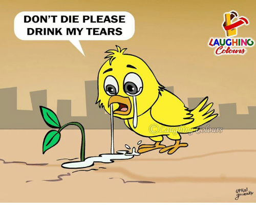 Indianpeoplefacebook, Tears, and Laughing: DON'T DIE PLEASE  DRINK MY TEARS  LAUGHING  olours  UtKal  ukaby