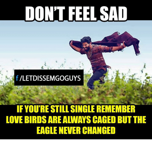 love bird: DON'T FEEL SAD  f VLETDISSEMGOGUYS  IF YOURESTILL SINGLE REMEMBER  LOVE BIRDS ARE ALLWAYS CAGED BUT THE  EAGLE NEVER CHANGED