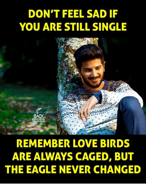love bird: DON'T FEEL SAD IF  YOU ARE STILL SINGLE  REMEMBER LOVE BIRDS  THE EAGLE NEVER CHANGED