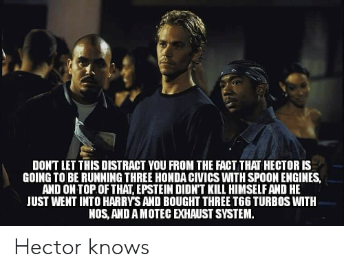 Honda, Dank Memes, and Running: DONT LET THIS DISTRACT YOU FROM THE FACT THAT HECTOR IS  GOING TO BE RUNNING THREE HONDA CIVICS WITH SPOON ENGINES  AND ON TOP OF THAT, EPSTEIN DIDN'T KILL HIMSELF AND HE  JUST WENT INTO HARRYS AND BOUGHT THREE T66 TURBOS WITH  NOS, AND A MOTEC EXHAUST SYSTEM. Hector knows