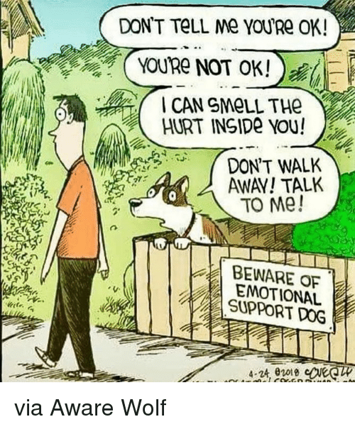 Wolf, Dog, and Can: DON'T TeLL Me YOURe OK!  CAN SMOLL THe  HURT INSIDe YOU!  .;  -DON'T WALK  SAWAY! TALK  TO Me!  BEWARE OF  EMOTIONAL  SUPPORT DOG  4-24 0018 via Aware Wolf