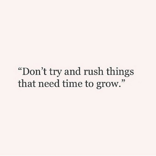 """Dont Try: """"Don't try and rush things  that need time to grow.""""  95"""