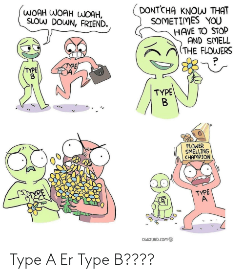 Owlturd: DONTCHA  WOAH WOAH WOAH,  SLOW DOWN, FRIEND.  KNOW THAT  SOMETIMES YOU  HAVE TO STOP  AND SMELL  (THE FLOWERS  TYPE  TYPE  TYPE  B  FLOWER  SMELLING  CHAMPION  TYPE  A  TYPE  OWLTURD.COM Type A Er Type B????