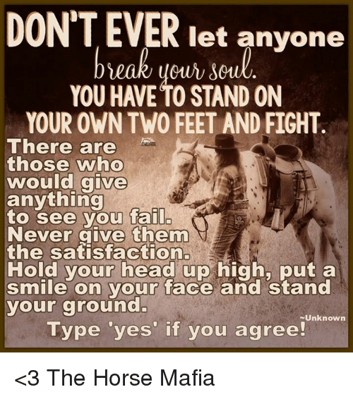 Horses, Memes, and Horse: DONTEVER let anyone  YOU HAVE TO STAND ON  YOUR OWN TWO FEET AND FIGHT  There are  those who  would give  anything  to see you fail  Never give them  the satisfaction.  Hold your head up high, put a  smile on your face and stand  your ground  Unknown  Type yes if you agree! <3 The Horse Mafia