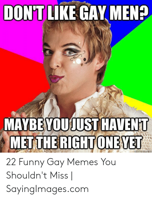 Funny, Memes, and Com: DONTIKE GAY MEN?  MAYBE YOUJUST HAVENT  MET THE RIGHT ONEVET  06 0  quickmeme. com 22 Funny Gay Memes You Shouldn't Miss | SayingImages.com