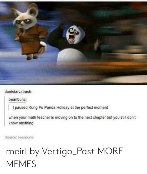 kung fu: dontstarvetrash:  beanbunz:  I paused Kung Fu Panda Holiday at the perfect moment  when your math teacher is moving on to the next chapter but you still don't  know anything  Source: beanbunz meirl by Vertigo_Past MORE MEMES