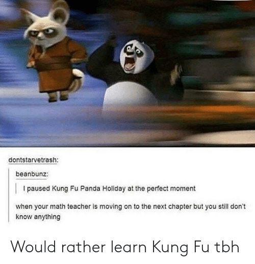 Kung Fu Panda: dontstarvetrash:  beanbunz:  I paused Kung Fu Panda Holiday at the perfect moment  when your math teacher is moving on to the next chapter but you still don't  know anything Would rather learn Kung Fu tbh