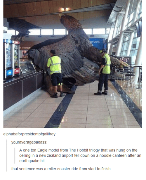 The Hobbits: DONUT  elphabaforpresidentofgallifrey  ouraveragebadass  A one ton Eagle model from The Hobbit trilogy that was hung on the  ceiling in a new Zealand airport fell down on a noodle canteen after an  earthquake hit.  that sentence was a roller coaster ride from start to finish
