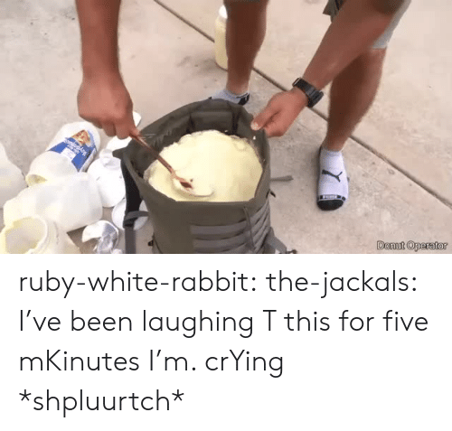 donut: Donut Operator ruby-white-rabbit: the-jackals:  I've been laughing T this for five mKinutes I'm. crYing  *shpluurtch*