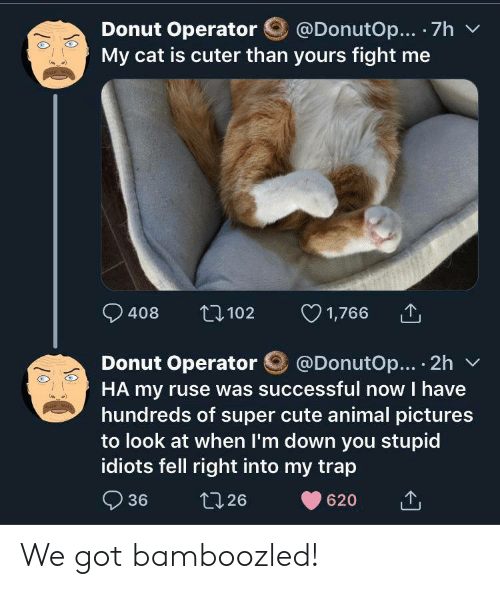 donut: @DonutOp... 7h  Donut Operator  My cat is cuter than yours fight me  1,766  t102  408  @DonutOp... 2h  Donut Operator  HA my ruse was successful now I have  hundreds of super cute animal pictures  to look at when I'm down you stupid  idiots fell right into my trap  36  t126  620 We got bamboozled!