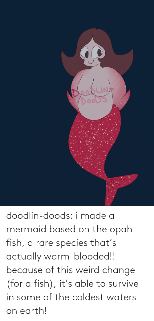 Because Of: doodlin-doods:  i made a mermaid based on the opah fish, a rare species that's actually warm-blooded!! because of this weird change (for a fish), it's able to survive in some of the coldest waters on earth!