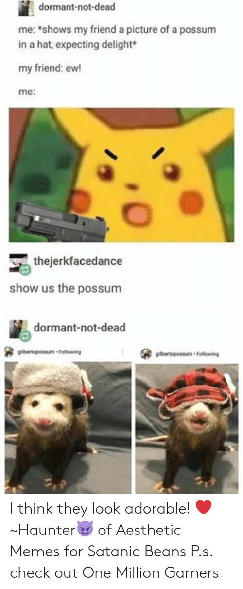 satanic: dormant-not-dead  me: shows my friend a picture of a possum  in a hat, expecting delight*  my friend: ew!  me:  thejerkfacedance  show us the possunm  dormant-not-dead  gilbertopossum Following I think they look adorable! ❤️  ~Haunter😈 of Aesthetic Memes for Satanic Beans  P.s. check out One Million Gamers