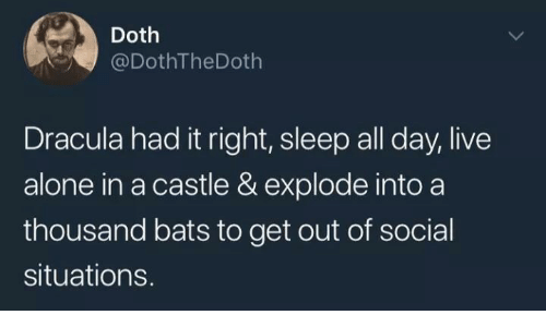 Dracula: Doth  @DothTheDoth  Dracula had it right, sleep all day, live  alone in a castle & explode into a  thousand bats to get out of social  situations.
