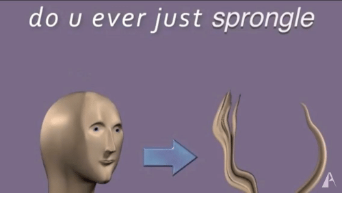 Just, Ever, and Dou: dOU ever JUst spronge