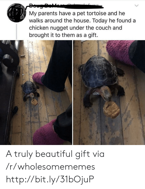 nugget: Doug Dear  My parents have a pet tortoise and he  walks around the house. Today he found a  chicken nugget under the couch and  brought it to them as a gift. A truly beautiful gift via /r/wholesomememes http://bit.ly/31bOjuP