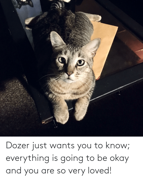 And You Are: Dozer just wants you to know; everything is going to be okay and you are so very loved!