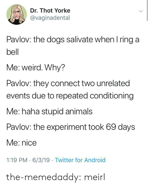 Android, Animals, and Dogs: Dr. Thot Yorke  @vaginadental  Pavlov: the dogs salivate when I ring a  bell  Me: weird. Why?  Pavlov: they connect two unrelated  events due to repeated conditioning  Me: haha stupid animals  Pavlov: the experiment took 69 days  Me: nice  1:19 PM 6/3/19 Twitter for Android the-memedaddy:  meirl