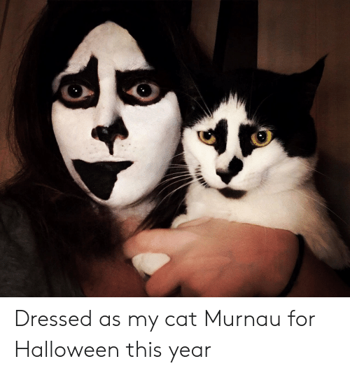 Halloween, Cat, and For: Dressed as my cat Murnau for Halloween this year