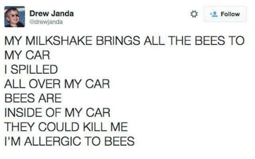 Bees: Drew Janda  drewjanda  Follow  MY MILKSHAKE BRINGS ALL THE BEES TO  MY CAR  I SPILLED  ALL OVER MY CAR  BEES ARE  INSIDE OF MY CAR  THEY COULD KILL ME  I'M ALLERGIC TO BEES