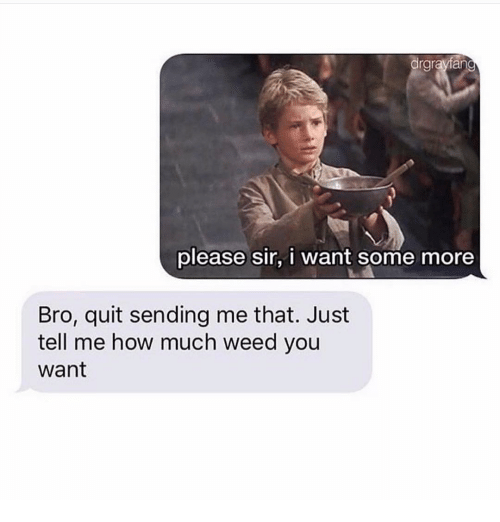 Memes, Some More, and Weed: drgrayfan  please sir, i want some more  Bro, quit sending me that. Just  tell me how much weed you  want