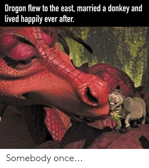 Happily Ever After: Drogon flew to the east, married a donkey and  lived happily ever after. Somebody once...
