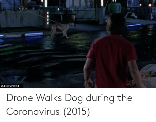 Coronavirus: Drone Walks Dog during the Coronavirus (2015)