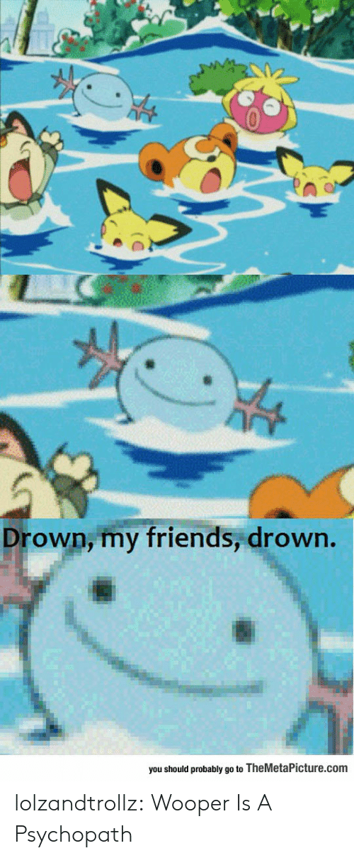 Friends, Tumblr, and Blog: Drown, my friends, drown.  you should probably go to TheMetaPicture.com lolzandtrollz:  Wooper Is A Psychopath