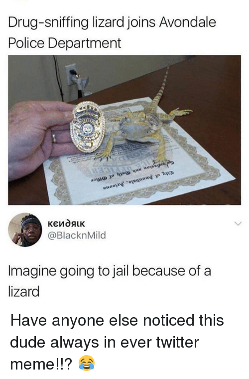 Twitter Memes: Drug-sniffing lizard joins Avondale  Police Department  @BlacknMild  Imagine going to jail because of a  lizard Have anyone else noticed this dude always in ever twitter meme!!? 😂