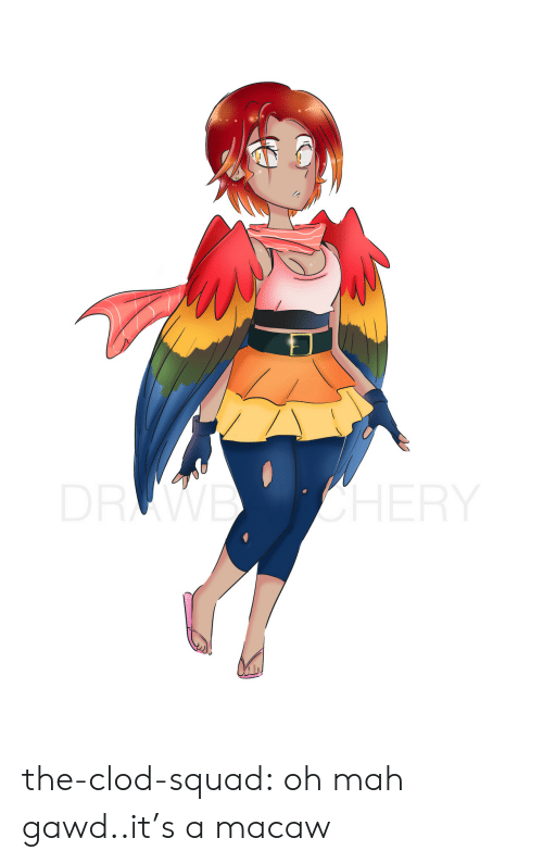 Squad, Tumblr, and Blog: DRWE OHERY the-clod-squad:  oh mah gawd..it's a macaw
