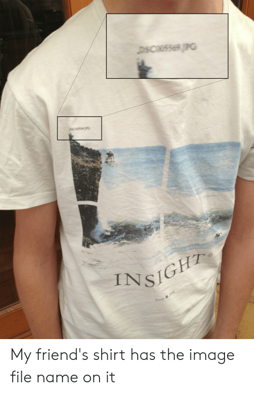 Friends, Image, and Insight: DSCU5569JPG  DSC5569PG  INSIGHT  Zoun 008 My friend's shirt has the image file name on it