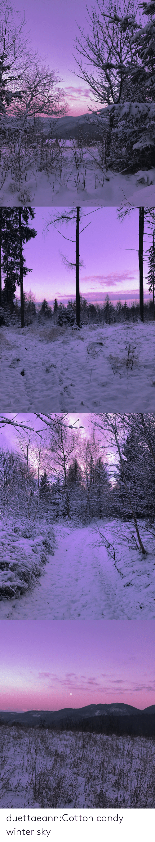 cotton: duettaeann:Cotton candy winter sky