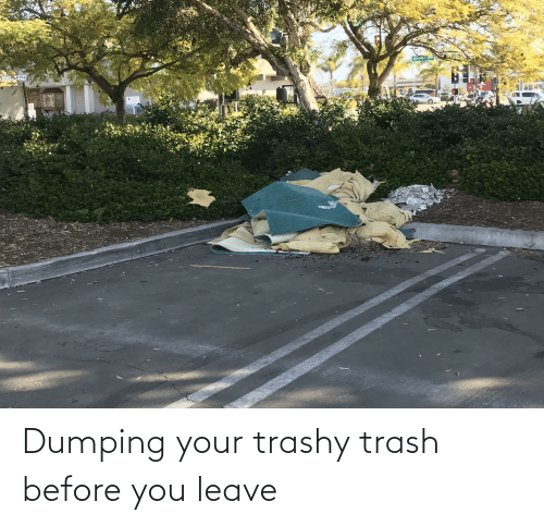 dumping: Dumping your trashy trash before you leave