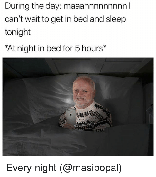 25 best memes about 5 hours 5 hours memes for Sofa bed you can sleep every night