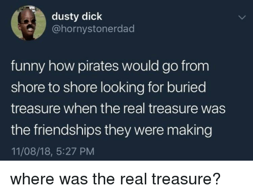 Funny, Dick, and Pirates: dusty dick  @hornystonerdad  funny how pirates would go from  shore to shore looking for buried  treasure when the real treasure was  the friendships they were making  11/08/18, 5:27 PM where was the real treasure?